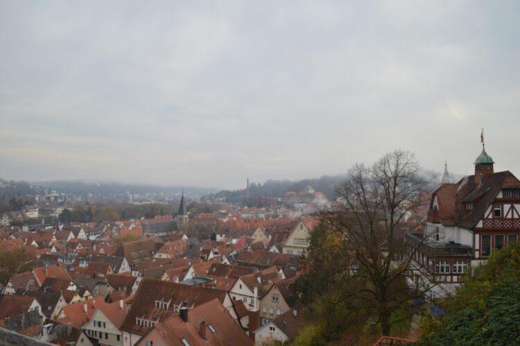 View from the Tübingen Castle